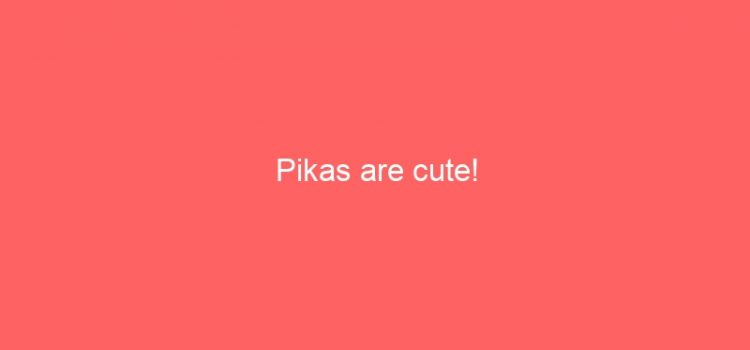 Pikas are cute!