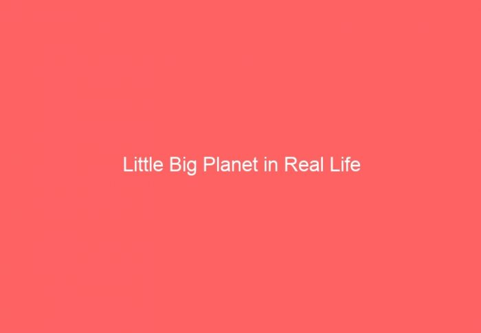Little Big Planet in Real Life
